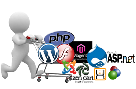 Web Desiging and Development